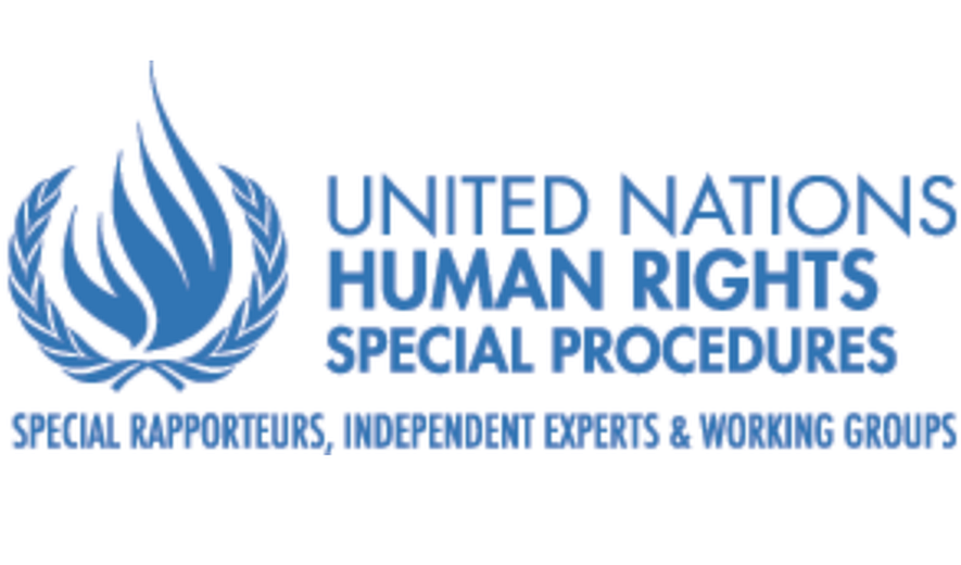 UN Rights Experts Appalled by Iran's Execution of Child Offender