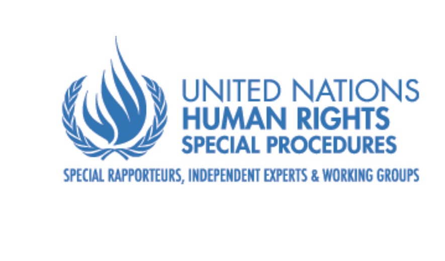 Statement by UN Experts on the Situation of Arash Sadeghi, Narges Mohammadi, Ahmadreza Djalali, Nazanin Zagheri and Kamran Ghaderi